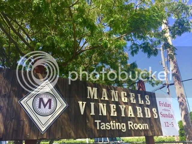 photo Wine mangels_zps9puynwkz.jpg