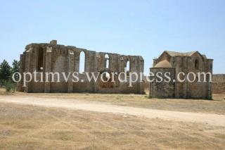 Ruinele bisericii Carmelitelor si bisericii armenesti