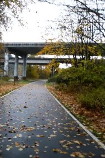 Bike Trail 4