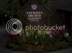 National Orchid Garden.