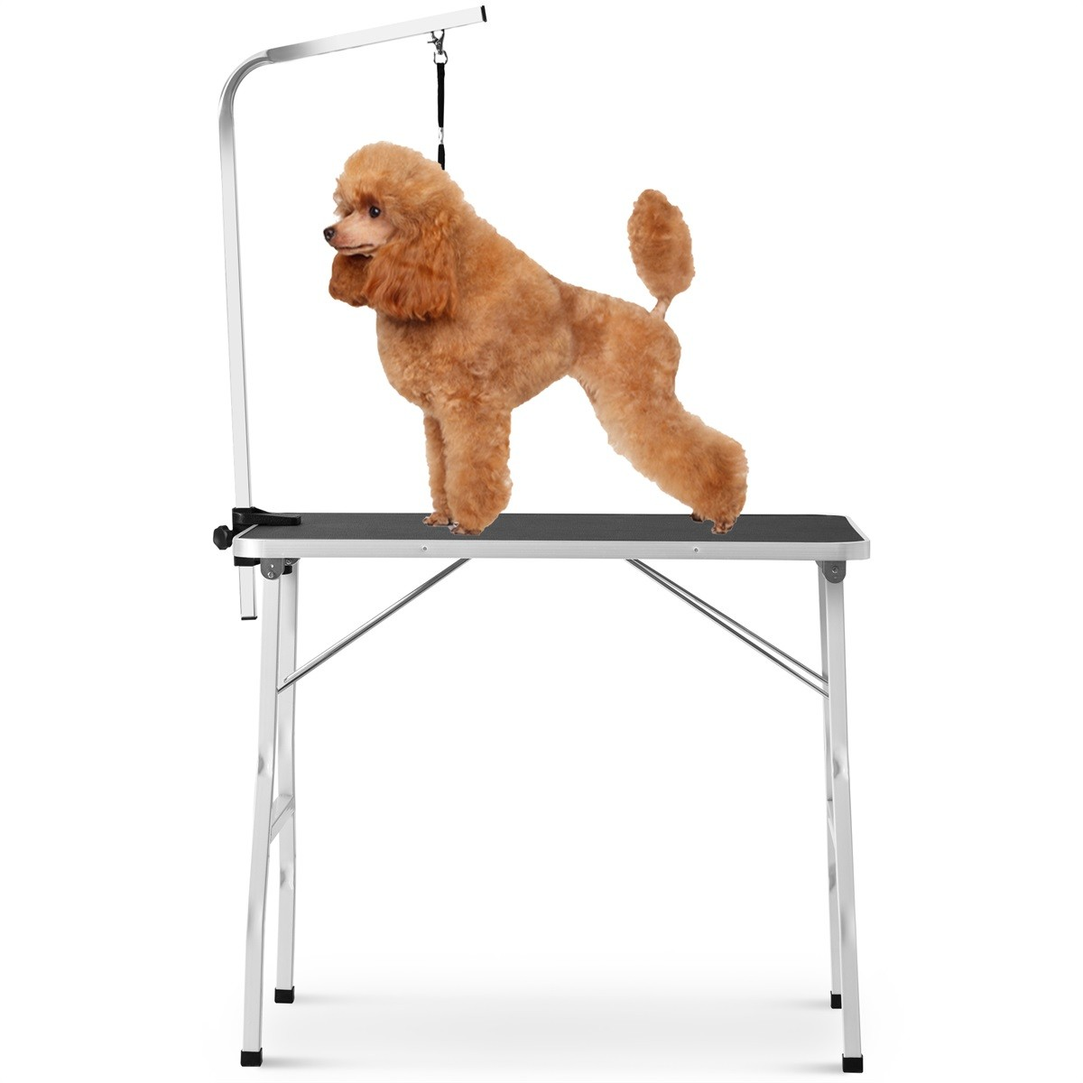 Modernluxe 36 Pet Grooming Table With Arm