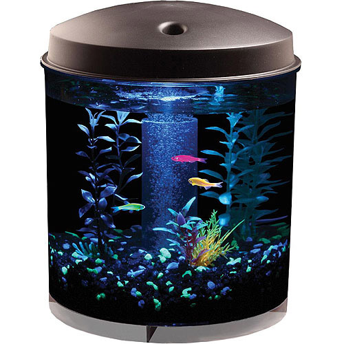 2 Gallon Fish Bowl Filter The Best Fish Of 2018