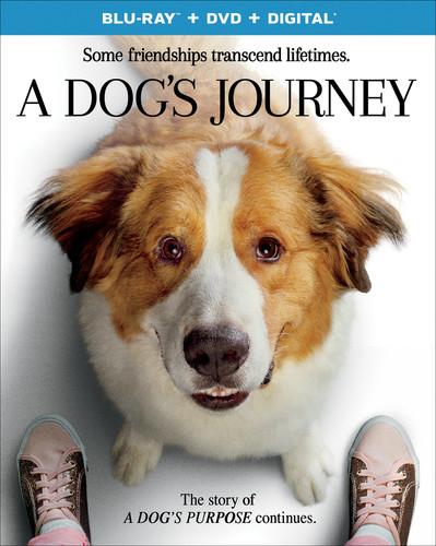 A Dog's Journey (Blu-ray + DVD)