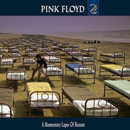 A Momentary Lapse Of Reason (CD)