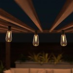 Outdoor Solar String Lights Solar Powered Traditional Hanging Lighting With Vintage Style Bulbs For Patio Backyard Garden Events By Pure Garden Walmart Com Walmart Com
