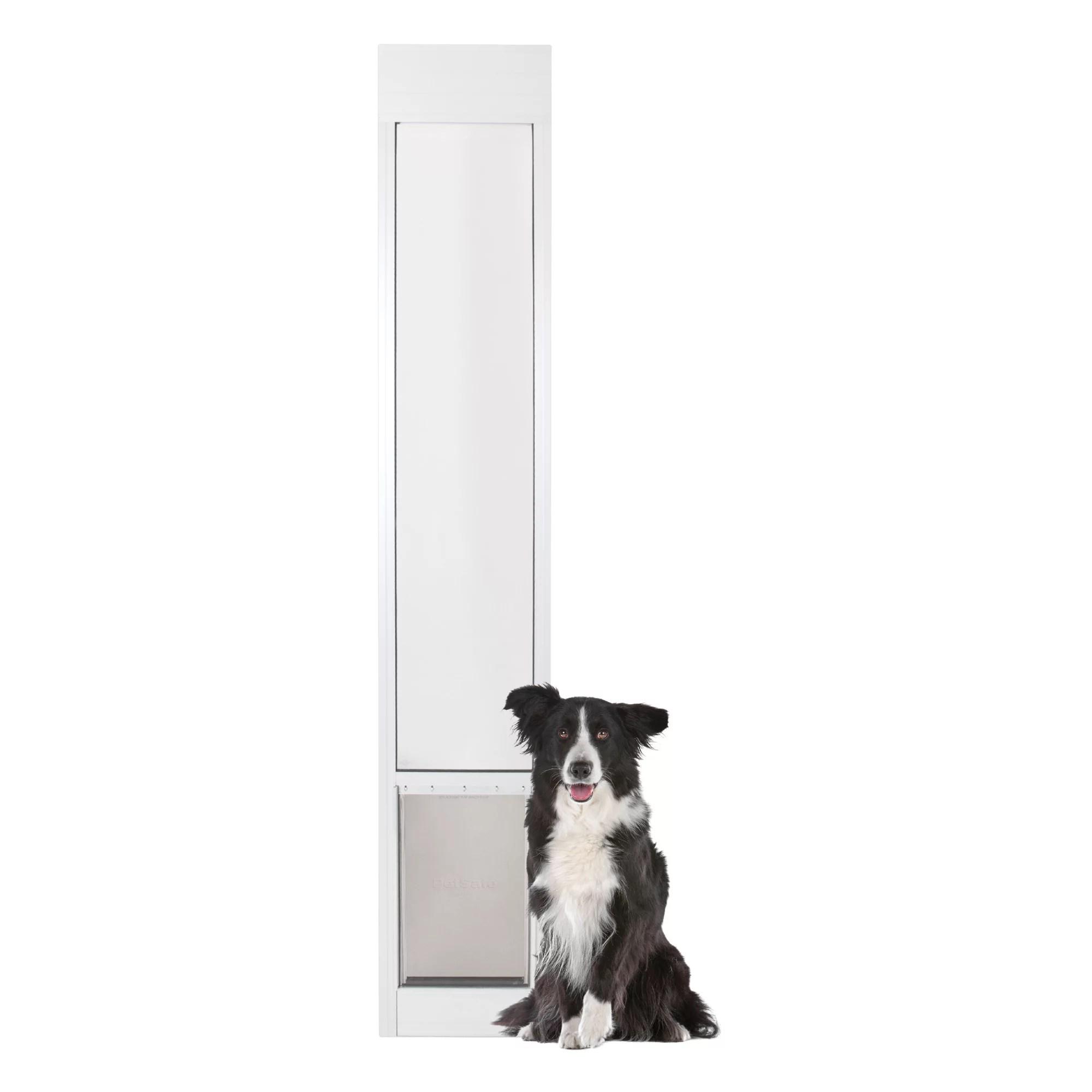 petsafe classic pet door online