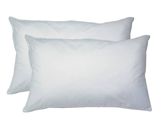 2 pack hypoallergenic down alternative bed pillows king size