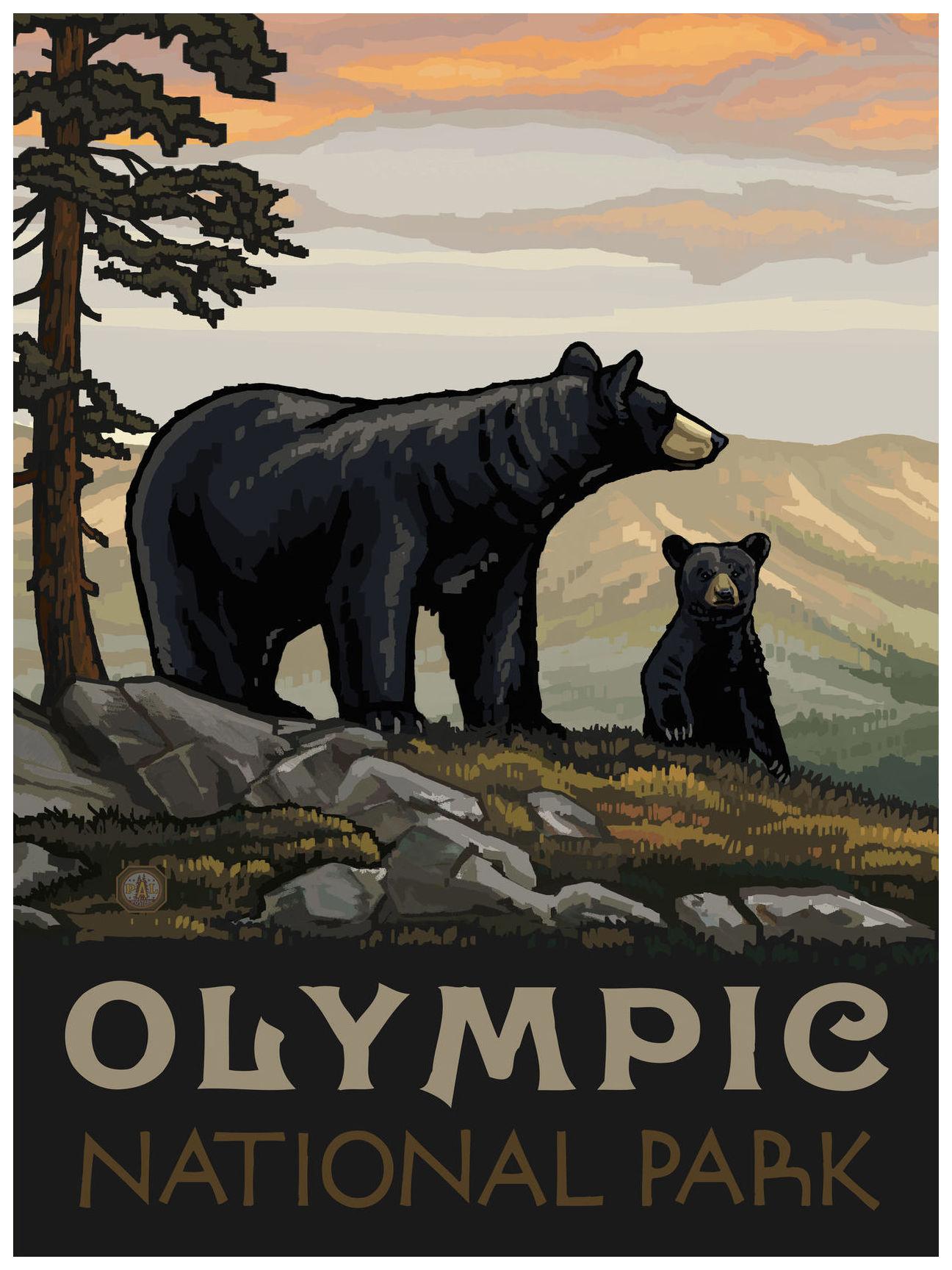 olympic national park washington black bear family giclee art print poster by paul a lanquist 18 x 24 walmart com