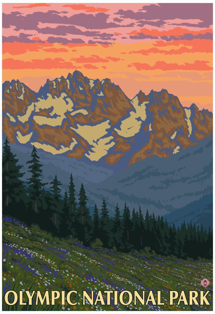 spring flowers olympic national park poster 13x19