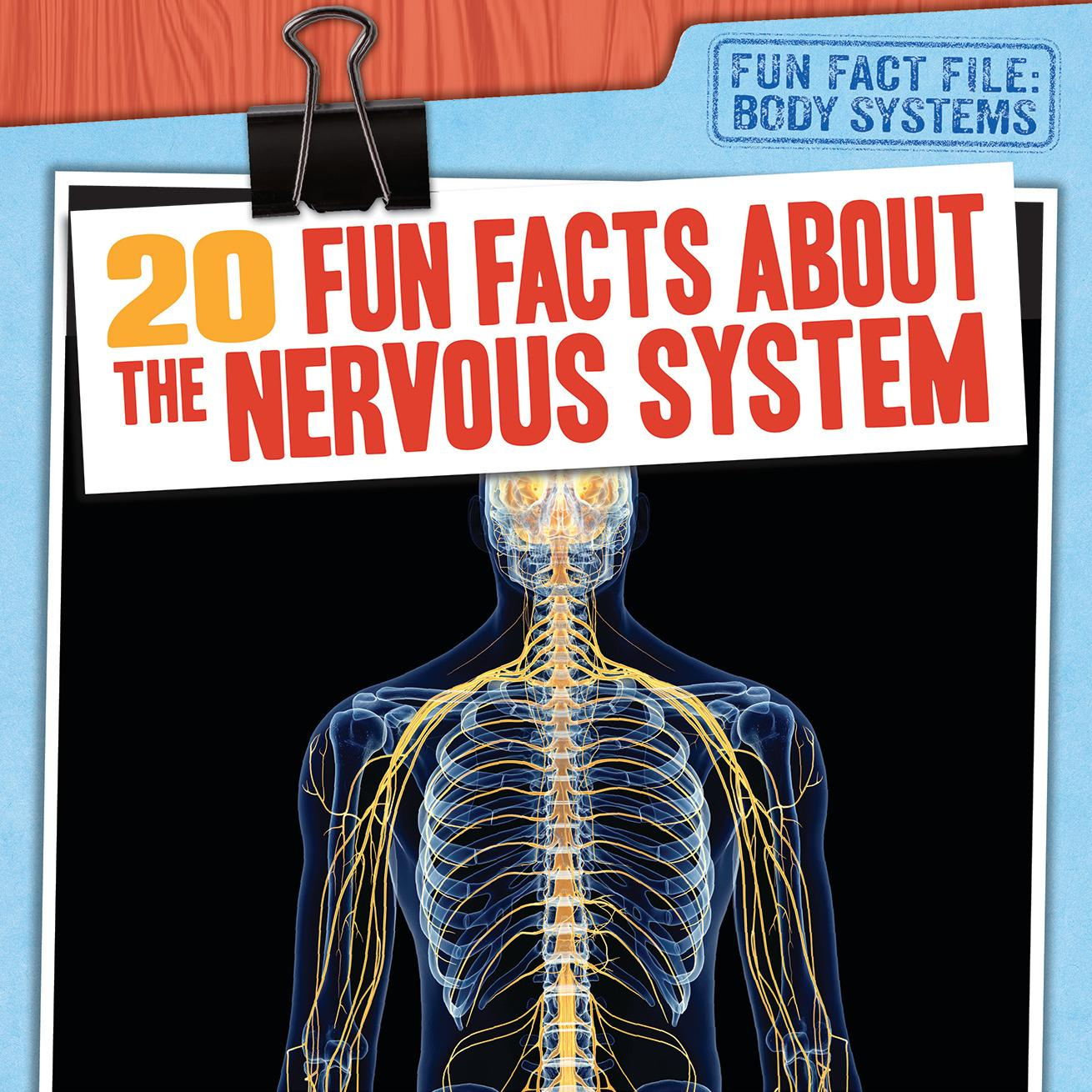 20 Fun Facts About The Nervous System