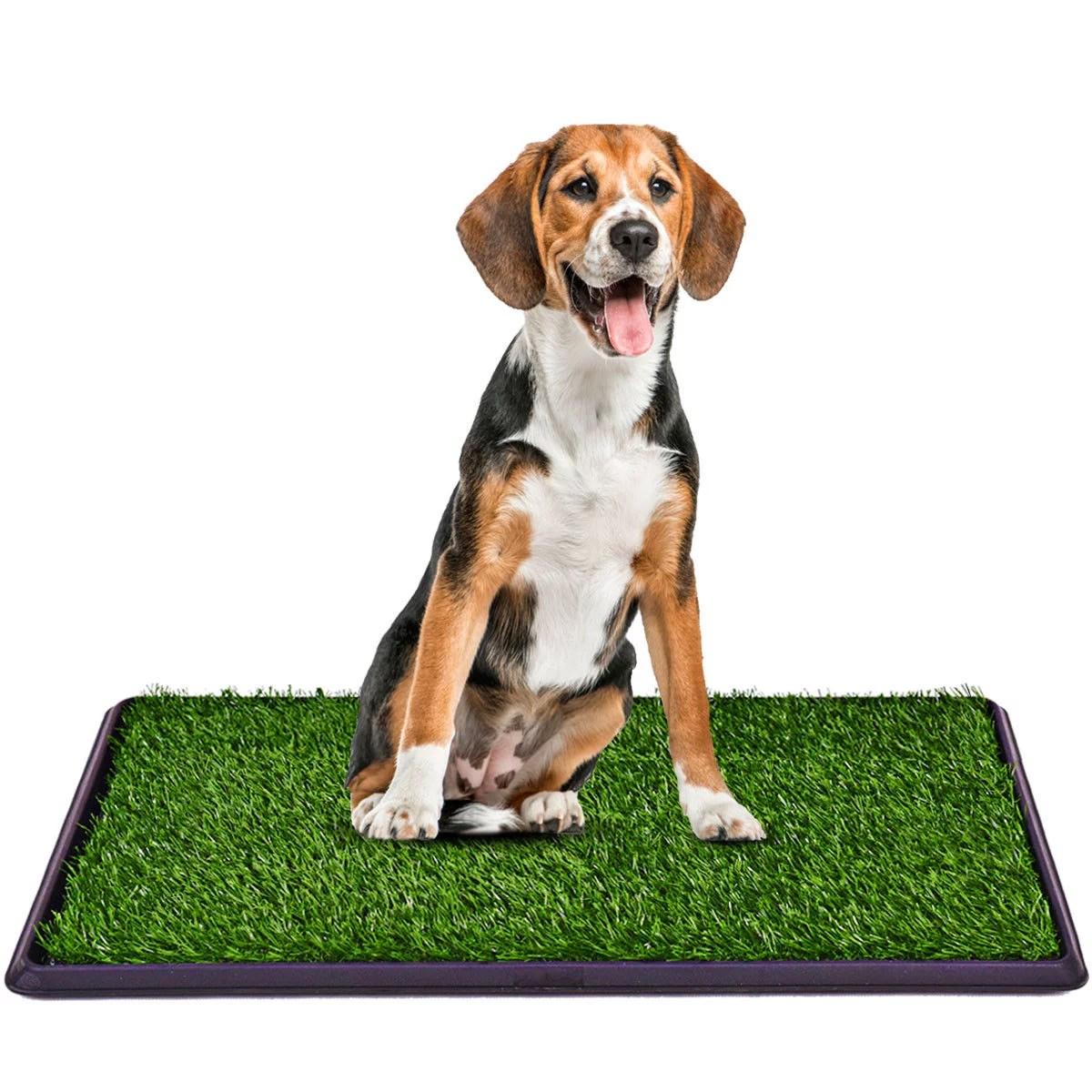 costway 30 x20 puppy pet potty training pee indoor toilet dog grass pad mat turf patch