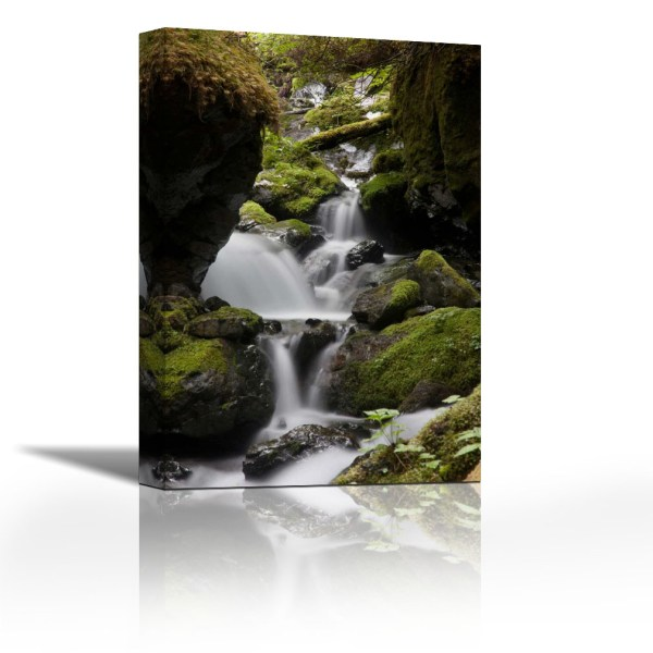 Cascading creek in temperate rainforest interior  Sitka  Alaska     Cascading creek in temperate rainforest interior  Sitka  Alaska    Contemporary Fine Art Giclee on Canvas Gallery Wrap   wall d    cor   Art  painting   18 x 27