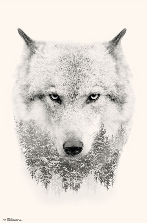 wolf trees wall poster 22 375 x 34