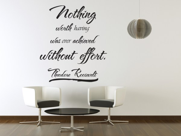 Vinyl Wall Art Theodore Roosevelt Quote Sticker Decal ...