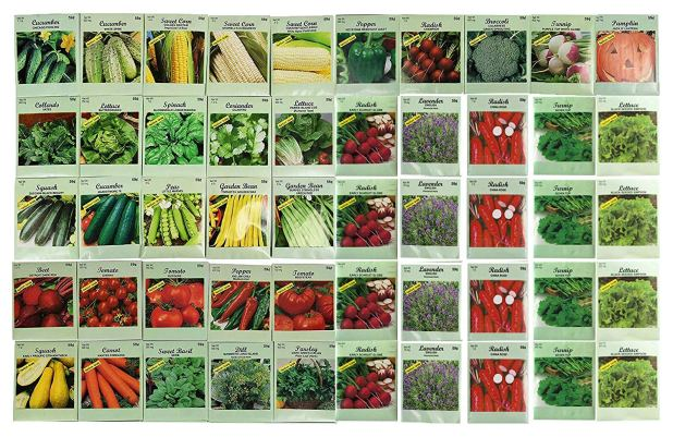 50 Packs Assorted Heirloom Vegetable Seeds 30+ Varieties All Seeds are Heirloom, 100% Non-GMO