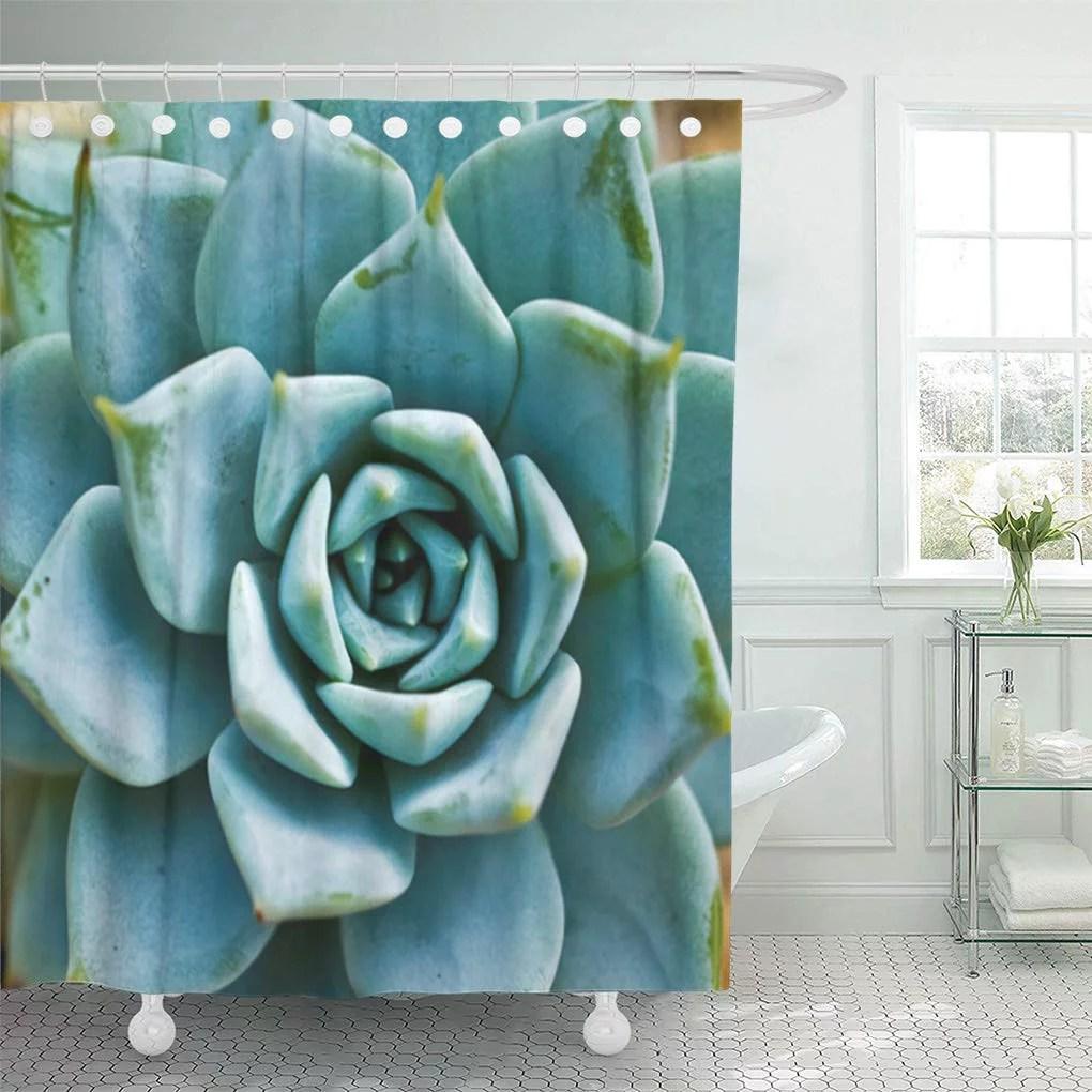 cynlon tan plant succulent closeup green aqua seafoam desert cactus bathroom decor bath shower curtain 60x72 inch walmart com