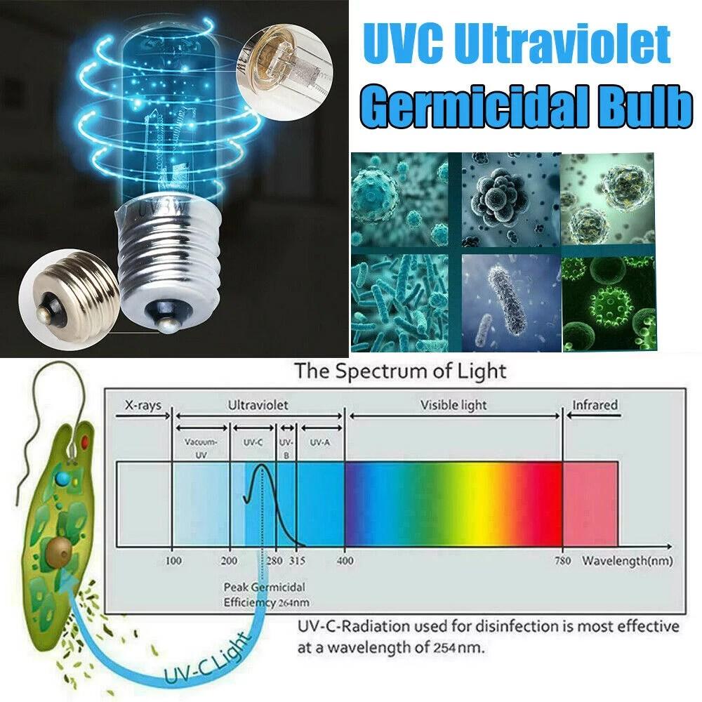 Ultraviolet Light Bulbs Walmart