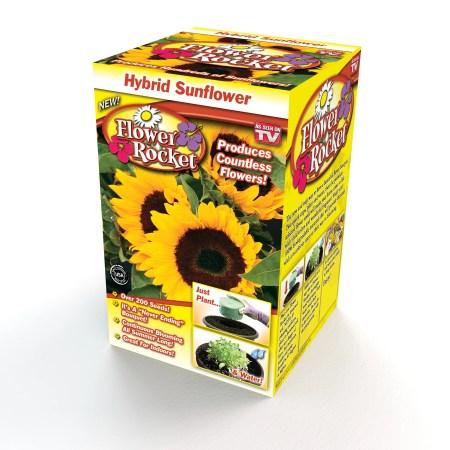 Sunflower Flower Rocket