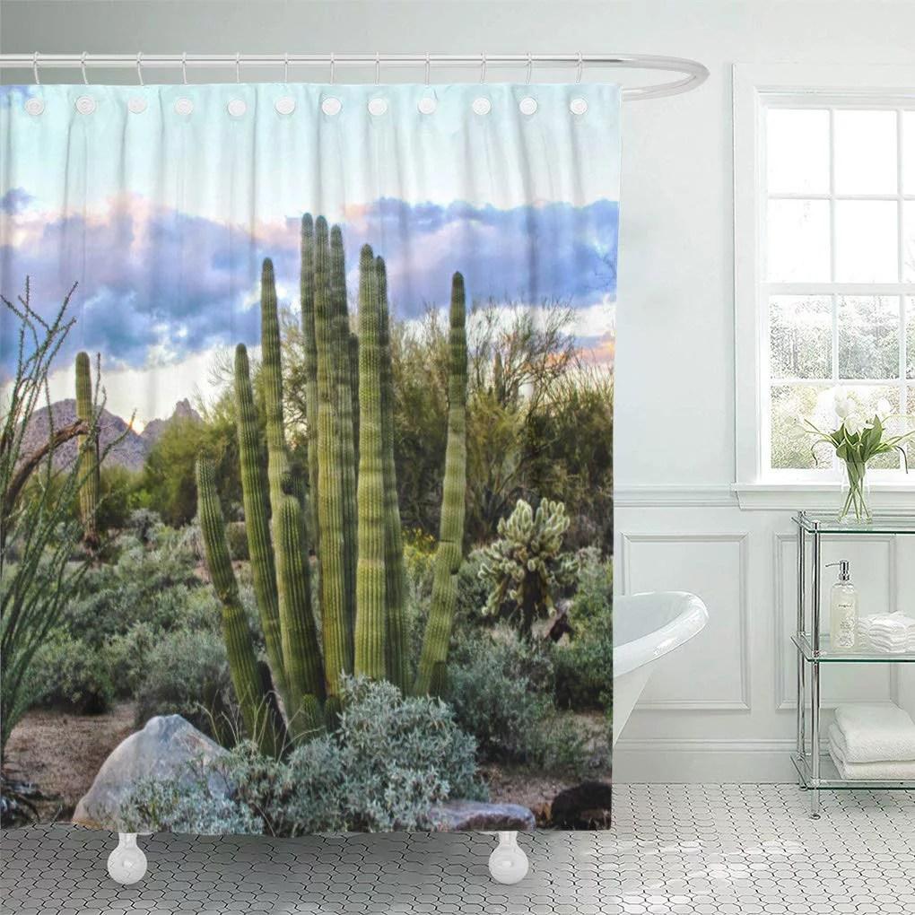 cynlon landscape scottsdale succulent sunset nature arizona travel southwest cactus bathroom decor bath shower curtain 66x72 inch