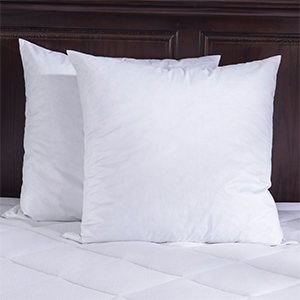 puredown square pillow insert pack of 2 26x26 95 feather 5 down