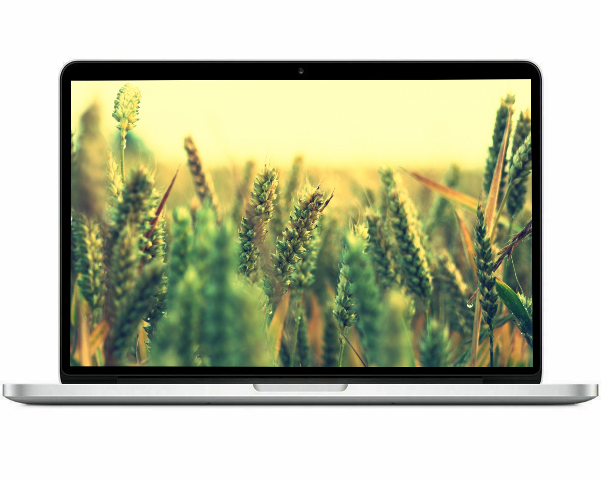 Refurbished - Apple MacBook Pro 13.3-inch, Intel Core i5, 500GB HDD, 8GB RAM, Bundle Deal: Black Case, Headset, Wireless Mouse, and Free 2-Day Shipping