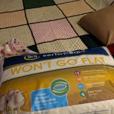 sertapedic won t go flat pillow standard queen