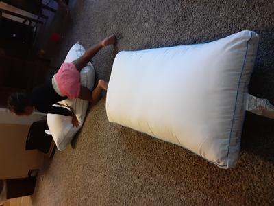 sertapedic cool slumbergel pillows standard queen set of 2