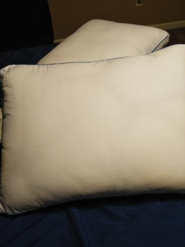 sensorpedic sofloft extra firm density pillow 2 pack king