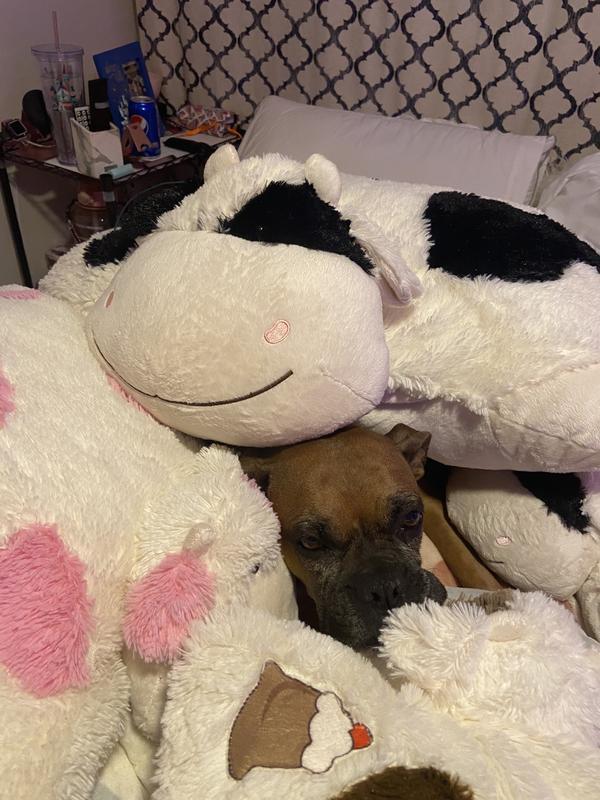 pillow pets jumboz disney eeyore jumbo stuffed animal plush toy