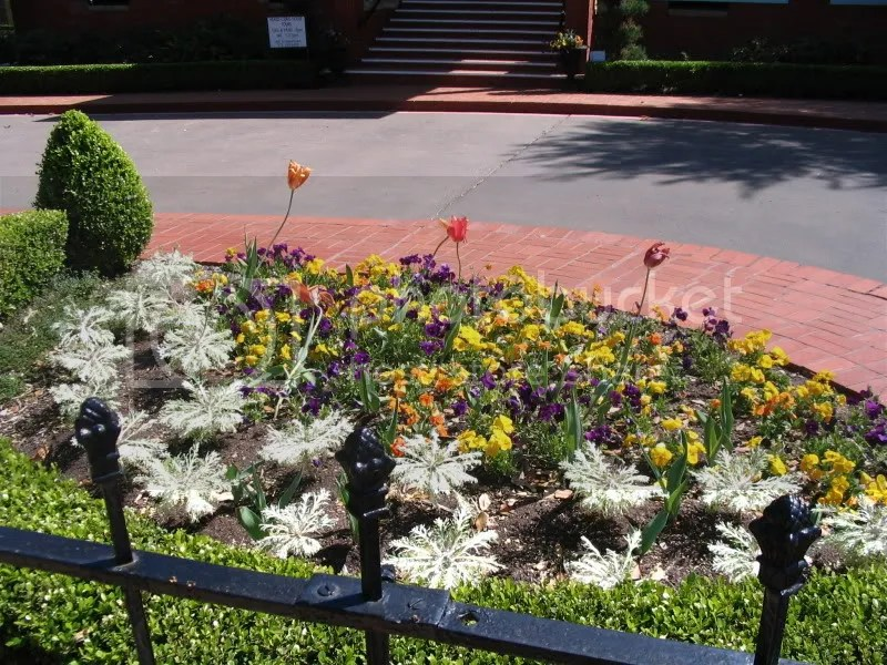 Flower Bed at Heard-Craig House