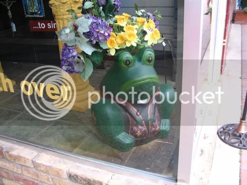 Frog at Cupfiller