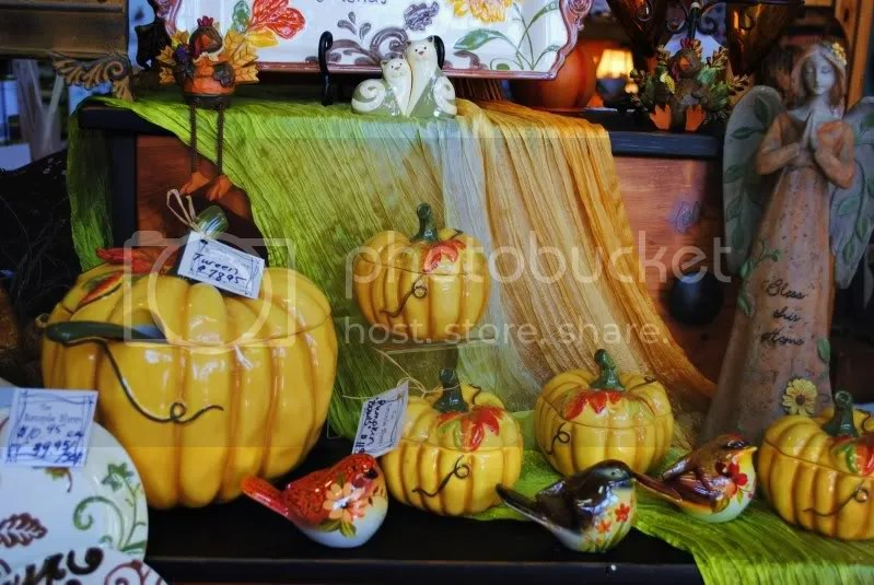 Pumpkin Set at The Sample Shop