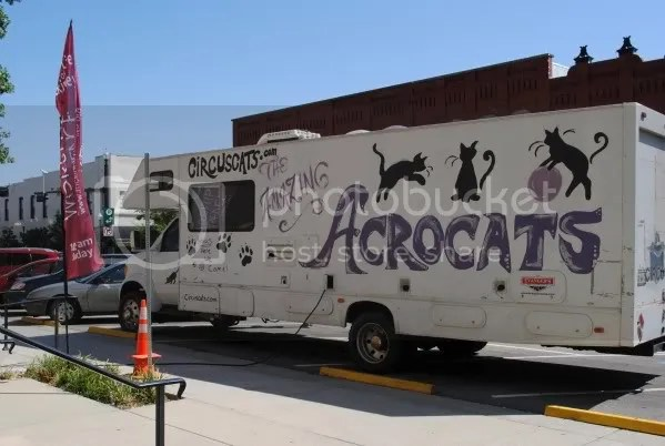 Amazing Acro-Cats Truck