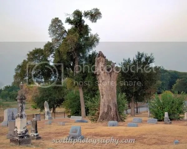 Photo by H Scott Photography (posted with permission of Pecan Grove Cemetery)