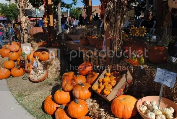 Pumpkins for Sale on the Square