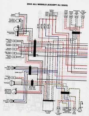 Rigid_EVO wiring diagram  The Sportster and Buell