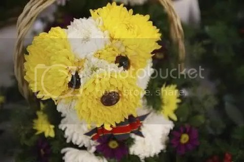 Make Puppy bouquets out of flowers! (4/4)