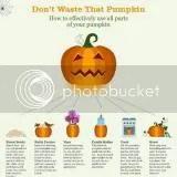 photo pumpkin1_zpsf75f578e.jpg