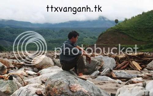 noidauTungChin.jpg picture by ttxvanganh14