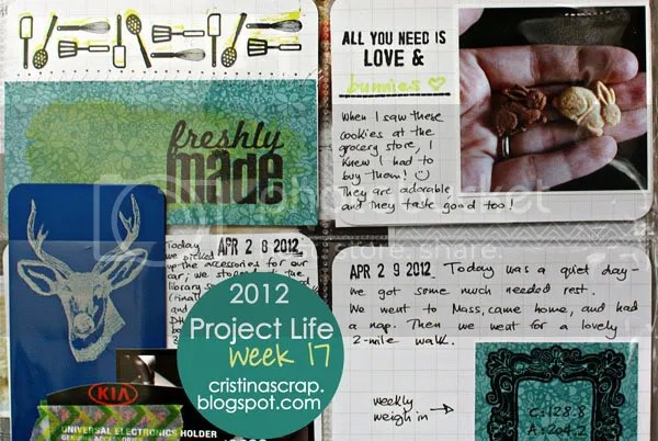 Project Life - Week 17