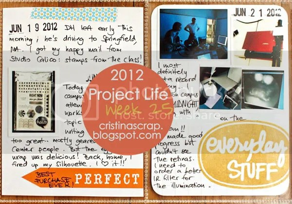 Project Life - Week 25