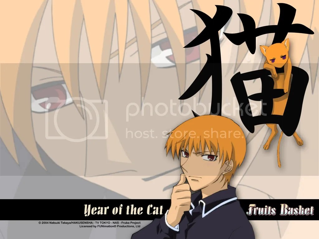 fruitsbasket_cat-1.jpg picture by tohruhonda_92