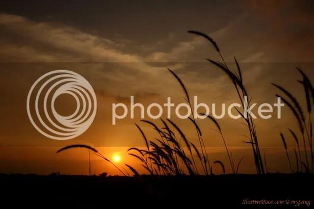 https://i1.wp.com/i553.photobucket.com/albums/jj389/anacodam/sunset2.jpg