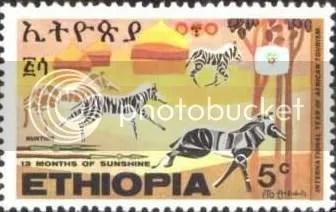 Zebras - Ethiopia