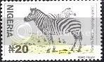 Zebra - Nigeria