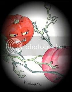 Fighting Tomatoes
