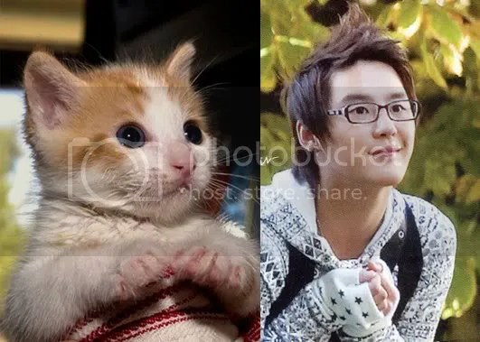 junsu cute like cat