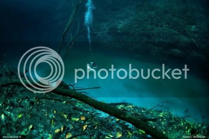 Foto Sungai Dalam Laut 3