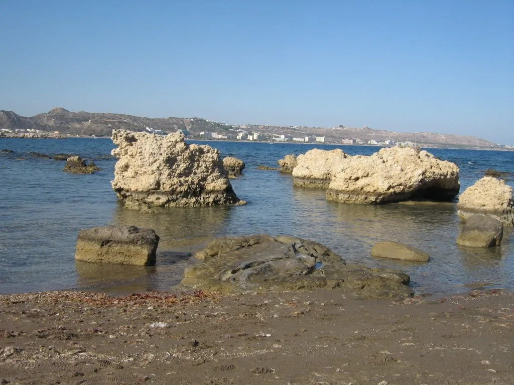 jax beach chiropractic steven rhodes