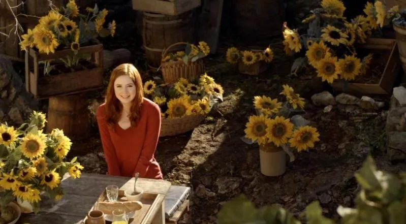 Amy Pond Doctor Who Sunflowers